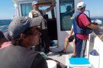 2015-07-04-pesca-desportiva-3